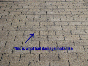 Centennial Hail Damage